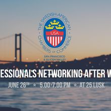 Professionals Networking After Work!