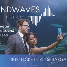 San Francisco Bay Gala: Soundwaves