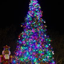 "Downtown San Leandro's Annual Holiday Tree Lighting Celebration and ""It's A Wonderful Night"""