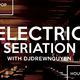 Electric Seriation