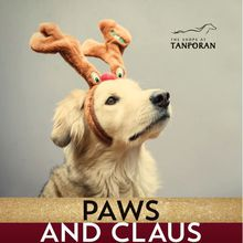 THE SHOPS AT TANFORAN CELEBRATES FURRY FRIENDS WITH FESTIVE PAWS & CLAUS PET PHOTO NIGHTS