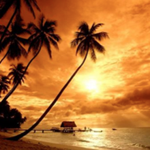 Summer Vacation Packages