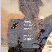 Poetry: Mary Cisper, Norma Cole, and Jane Lin