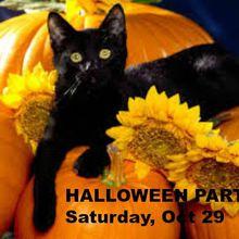 Marin Singles Halloween Costume Party & Dance