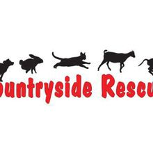 Huge Rummage Sale to Benefit Countryside Animal Rescue