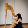 Santa Cruz Harpist image