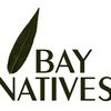 Bay Natives image