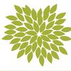 Club Botanic image