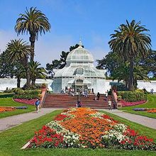 Sound Meditation at the Conservatory of Flowers (October!)