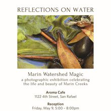 Reflections on Water Photo Exhibit
