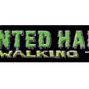 The Haunted Haight Walking Tour image
