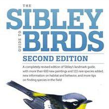 The Sibley Guide's David Allen Sibley