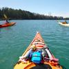 Kayak Connection image