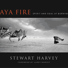 STEWART HARVEY & LARRY HARVEY at Books Inc. Berkeley