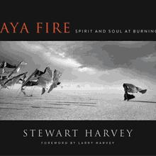 STEWART HARVEY & LARRY HARVEY at Books Inc. Berkeley