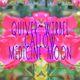 Quiver / Wtrbel 2017 Serve The Earth Summer Tour, Bay Area tour date w/ Medicine Moon / Callow