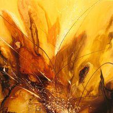 Marie Catherine Peloquin | My Wild Nature: Aurora Borealis