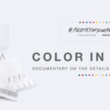 Room & Board Hosts TEALEAVES Color In Sight Film Screening & Panel Discussion