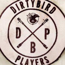 Dirtybird Players: Catz 'N Dogz, Cause & Affect