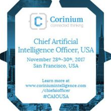 Chief Artificial  Intelligence Officer, USA