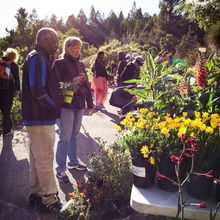 Free First Wednesday at UC Botanical Garden
