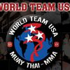 World Team USA image