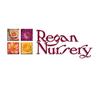 Regans Nursery image