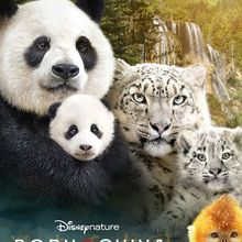 Disneynature, Born in China, Free Screening