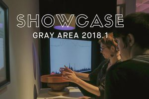 Gray Area Showcase 2018.1