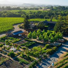 Deloach Vineyards Fundraiser Benefiting Demeter USA Biodynamic Farmer Education Initiative