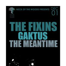 THE FIXINS, Gaktus, The Meantime