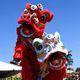 Community Day: Lunar New Year