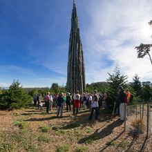 Goldsworthy in the Presidio - Guided Art Hike