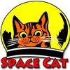Space Cat image