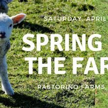PAMP Spring Fun Day at the Farm