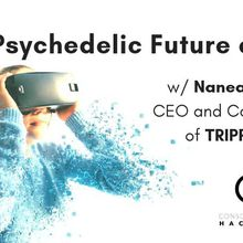 The Psychedelic Future of VR