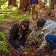 Earth Day in San Francisco: Volunteer with One Tree Planted