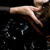 Echos Hair Design image
