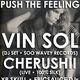 Push The Feeling: Vin Sol (DJ Set • Soo Wavey) + Cherushii (Live • 100% Silk) + YR SKULL + epicsauce DJs