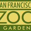 San Francisco Zoo image