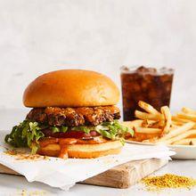 Gourmet Robot Burger Tastings