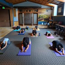 Community Yoga at Westfield San Francisco Centre