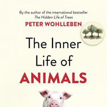 BINDERY: Peter Wohlleben / The Inner Life of Animals (signing only)
