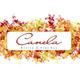 Summer Fermented Cocktails with Maz Naba | Canela Bistro & Wine Bar