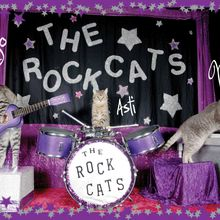The Amazing Acro-cats Slide into San Fransisco!