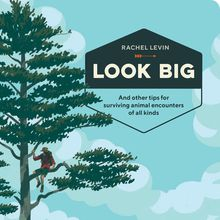 Rachel Levin book release: Look Big