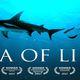 Sea of Life Documentary