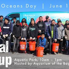 World Oceans Day 2019 Beach Cleanup hosted by Aquarium of the Bay