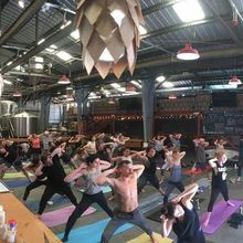 Yoga and Brews at Barebottle Brewing
