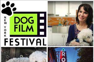 New York Dog Film Festival,...